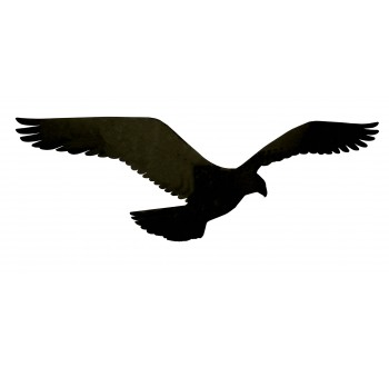 HARMONY sokol - černá silueta dravce (samolepící fólie - 350 mm)