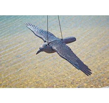 Havran v letu plastová 3D maketa na plašení ptáků 45 x 83 x 12 cm