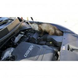 Deramax Auto ultrazvukový plašič kun a hlodavců