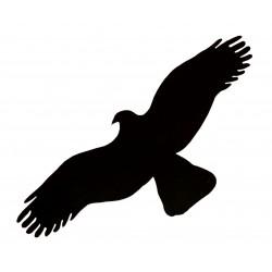 HARMONY orel - černá silueta dravce (samolepící fólie - 500 mm)